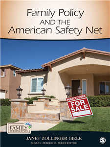 Family Policy and the American Safety Net