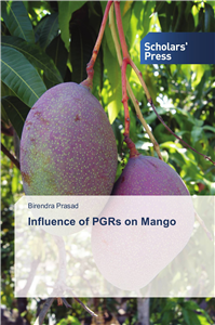 Influence of PGRs on Mango