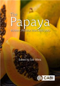The Papaya