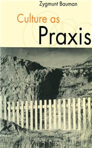 Culture as Praxis