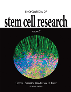 Encyclopedia of Stem Cell Research