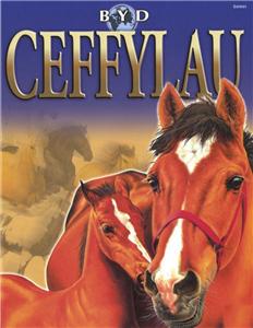 Byd Ceffylau