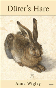 Dþurer's Hare