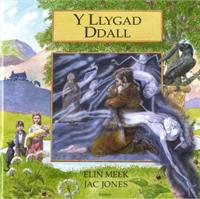 Y Llygad Dall