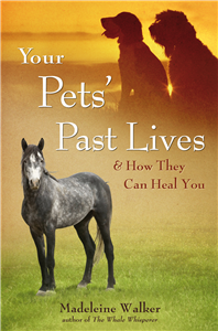Your Pets' Past Lives & How They Can Heal You
