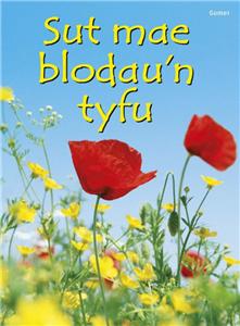 Sut Mae Blodau'n Tyfu