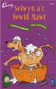 Selwyn A'r Newid Mawr