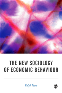 The New Sociology of Economic Behaviour